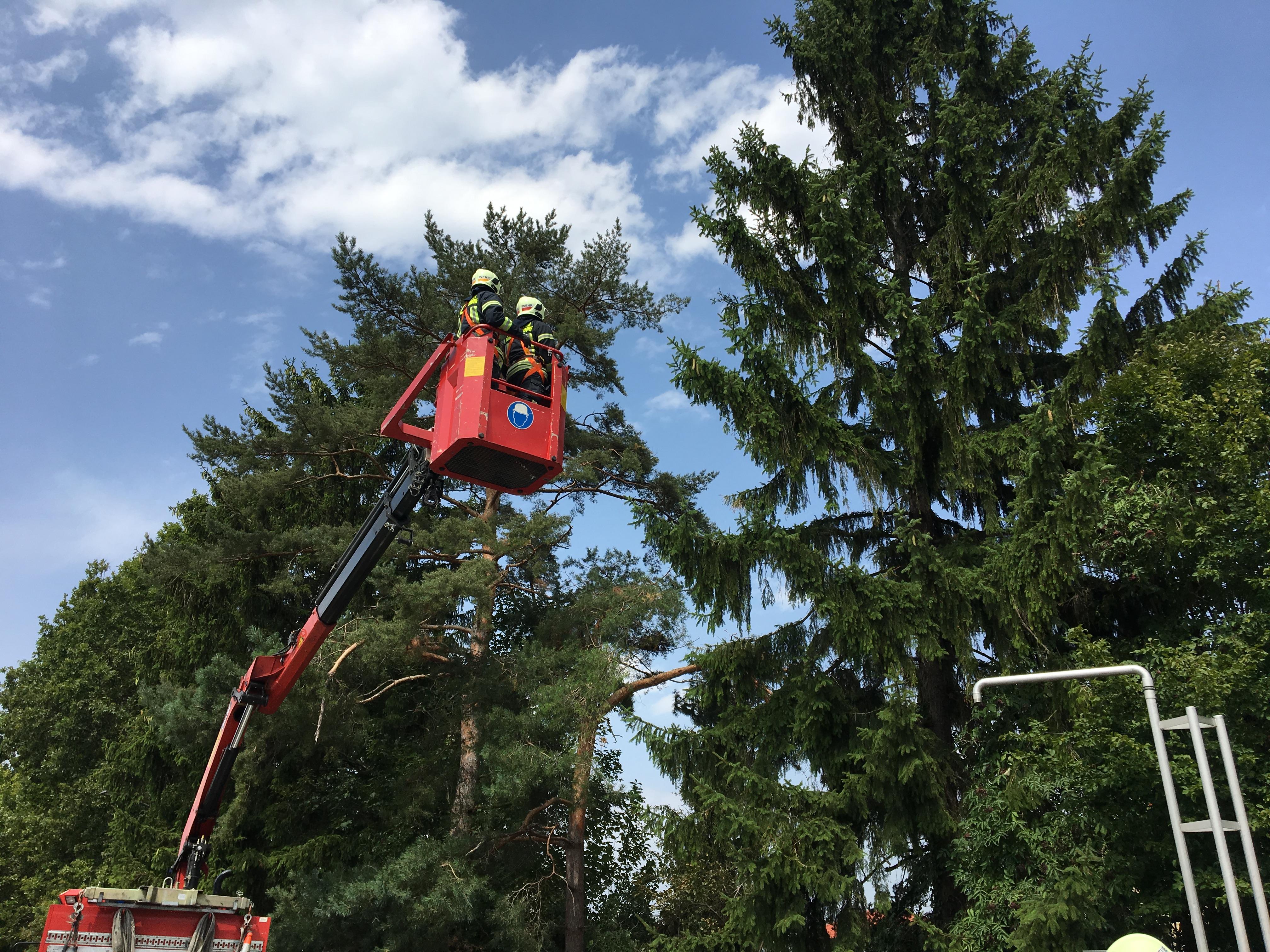 Einsatzfoto Sturmschaden-Baum droht umzustürzen